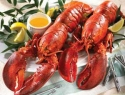 Mystic Fish: Fun, Fresh & Friendly: Tampa Bay Area's Favorite Seafood Spot for 15 Years in Palm Harbor, Florida