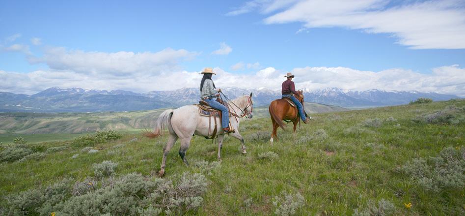 Gani_HorsebackRiding_hp