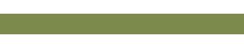 logo-stone1