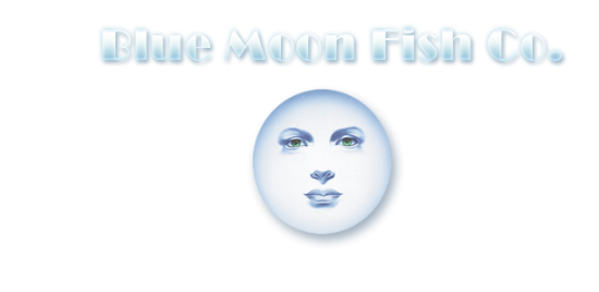 Blue moon fish company lauderdale by the sea fl come by for Blue moon fish company