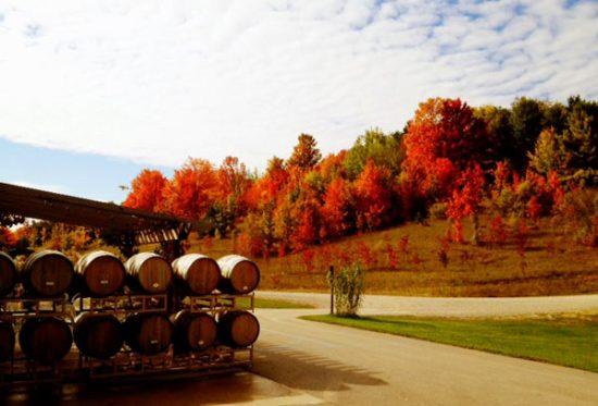 barrels-fall